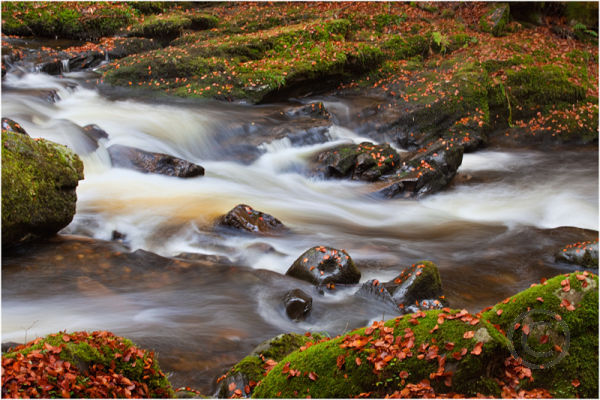 Rivers Flow 2