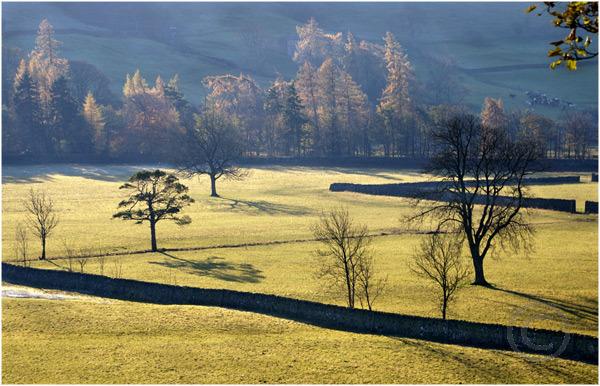 Morning Light Across the Valley