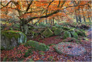Padley Gorge in Autumn 1