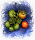 Tomato Swirl