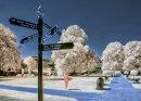 Which Way to Go St Marys Churchyard