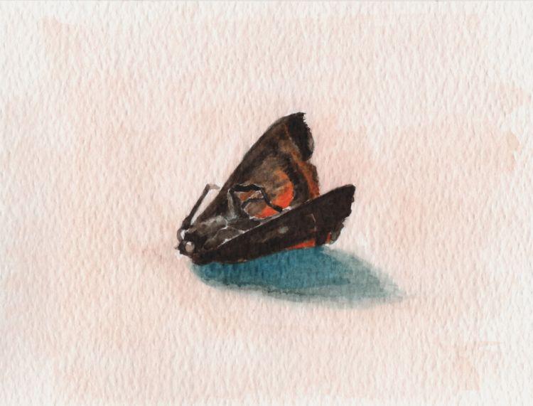 Moth (Deceased)