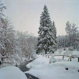 Winter cliche