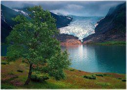 081. Glacier Engenbreen