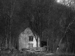 277. Abandoned 5