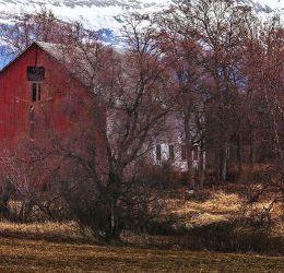 327-Valnesfjordhus 4