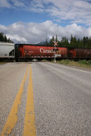 Canadian Pacific Railway, Bow Valley Parkway, Canadian Rockes