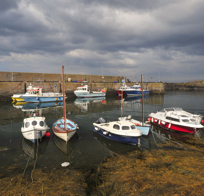 St Abbs Harbour 1
