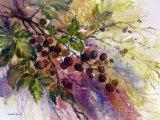Blackberries 27x37cm