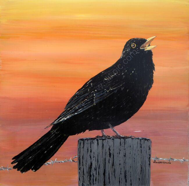 Blackbird Singing at the Break of Day