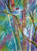 Blue Grey Tanagers 50x35cm