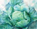 Cabbage Collage 50x35cm