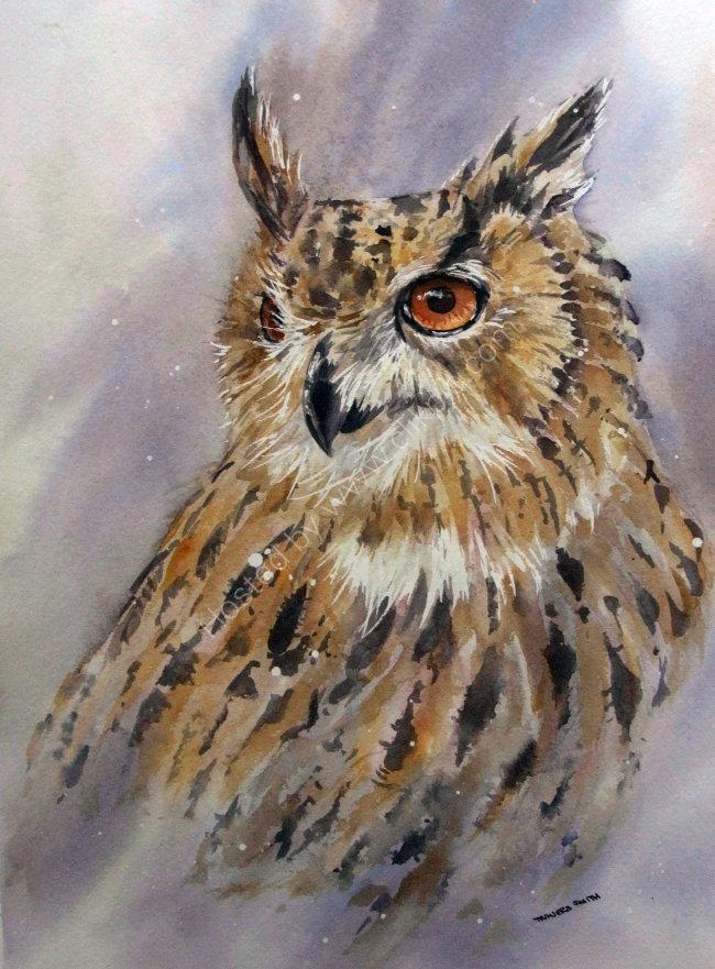 Eagle Owl Portrait 35x45cm approx