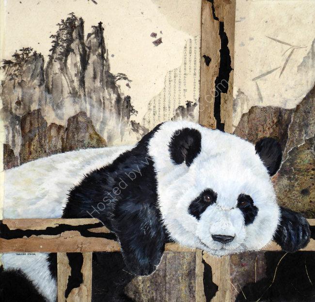 Giant Panda 50cmx50cm