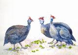 Guinea Fowl 50x35cm