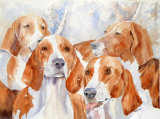 Hounds of Chiverny 25c35cm
