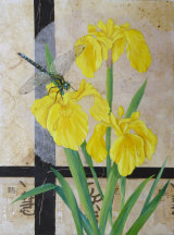 Irises Pondside 60x45cm