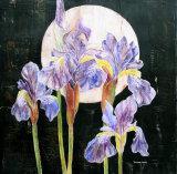 Irises in Moonlight 40x40cm