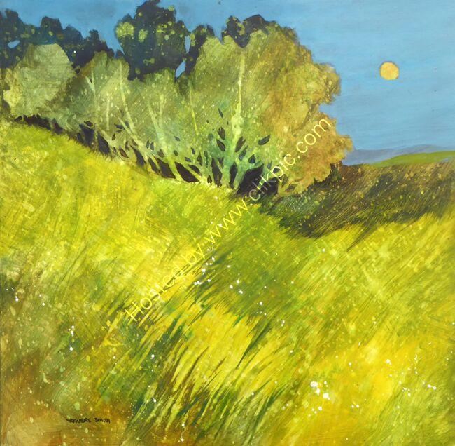 Moonlit Pasture