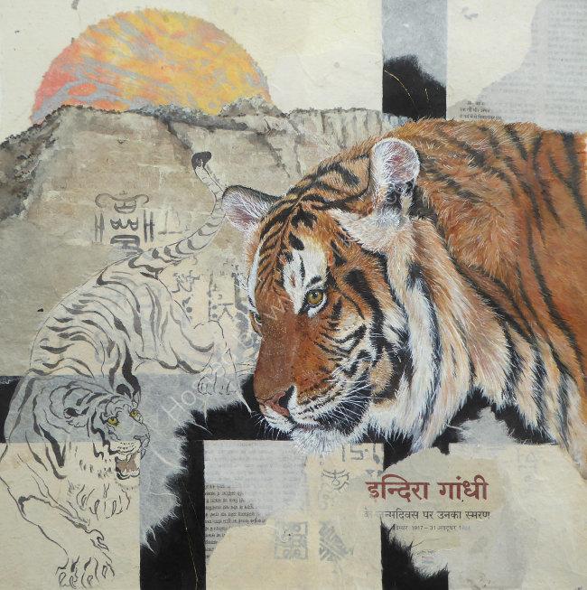 Tiger at Bandgevagh 50cmx50cm