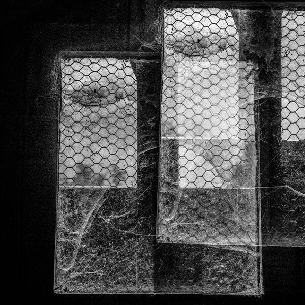 lockdown-2