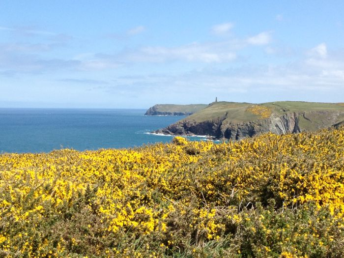 Gorse and The Daymark