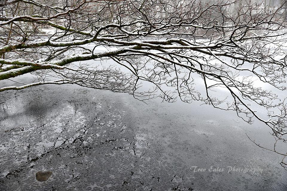 Frozen Yew Tree Tarn