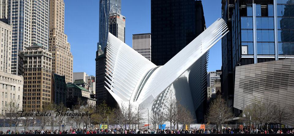 Across Ground Zero to The Oculus
