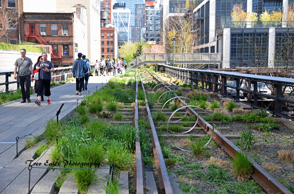 Walking the rails: Hudson River Greenway