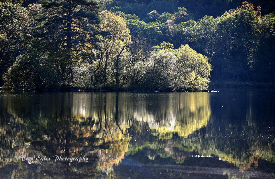 Reflected Island, Rydal Water