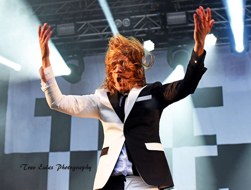 Howlin Pelle Almqvist, The Hives.