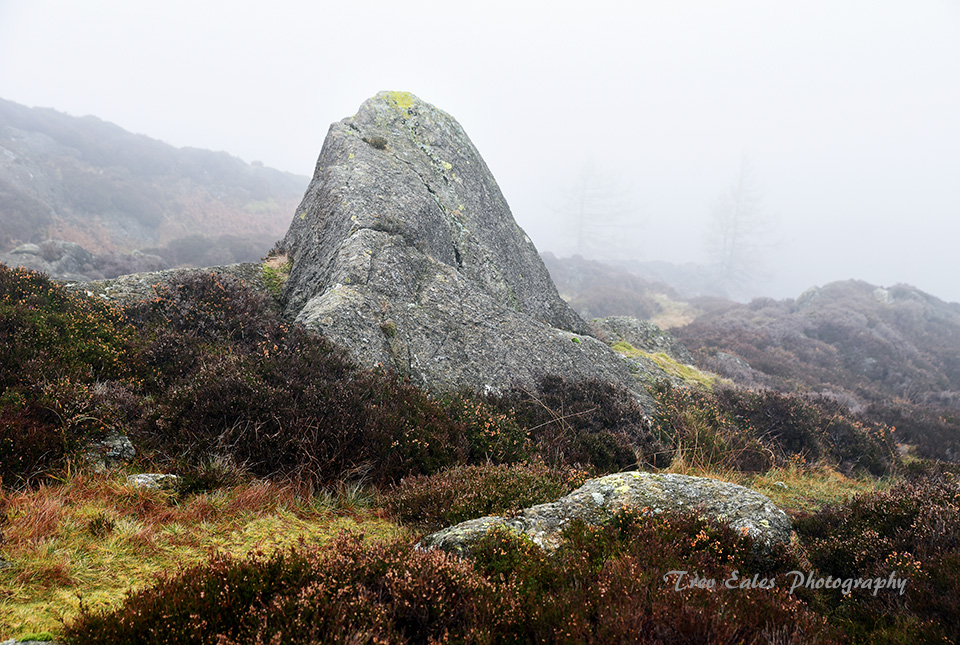 Monolith in the mist