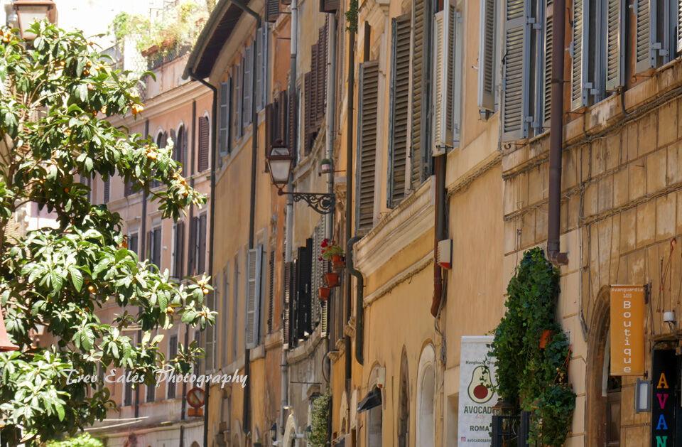 Street in Campo de' Fiori