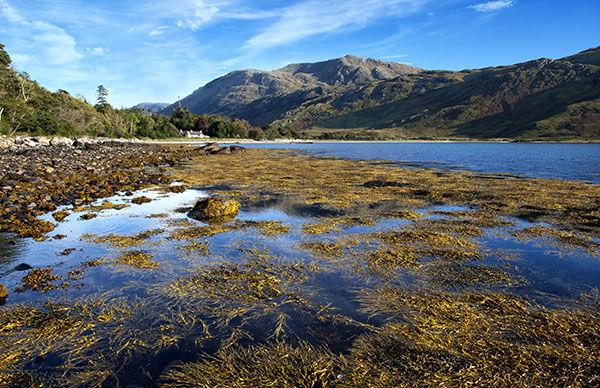 knoydart peninsula scotland image 1