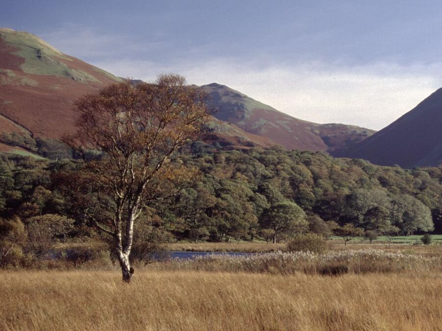 Buttermere #4