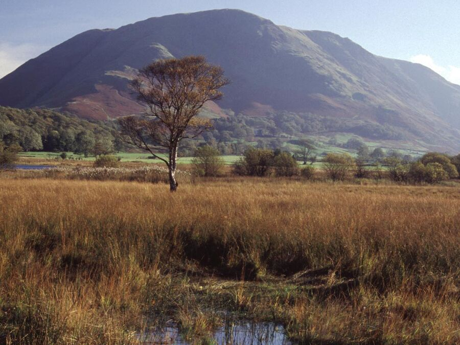 Buttermere #5