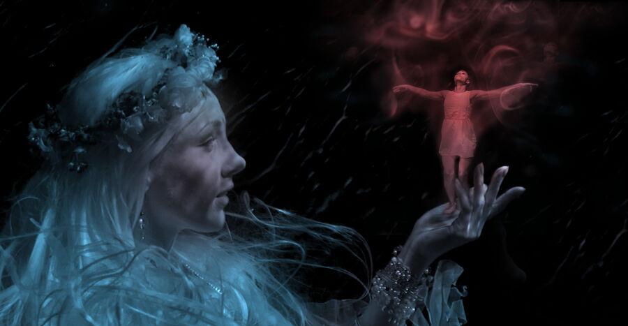 Fairy Magic (Clay Cross)