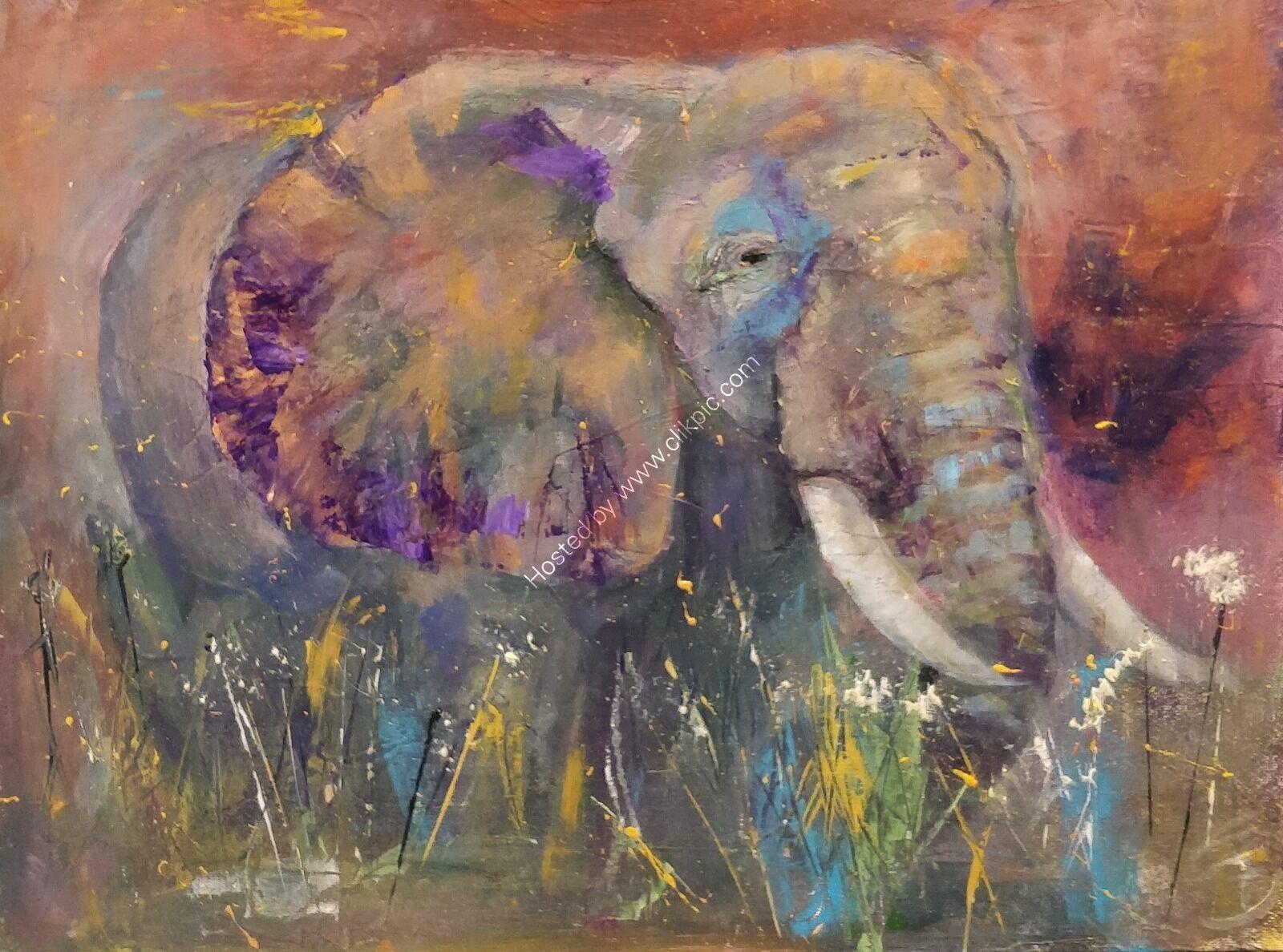 Bold Colour Abstract Elephant