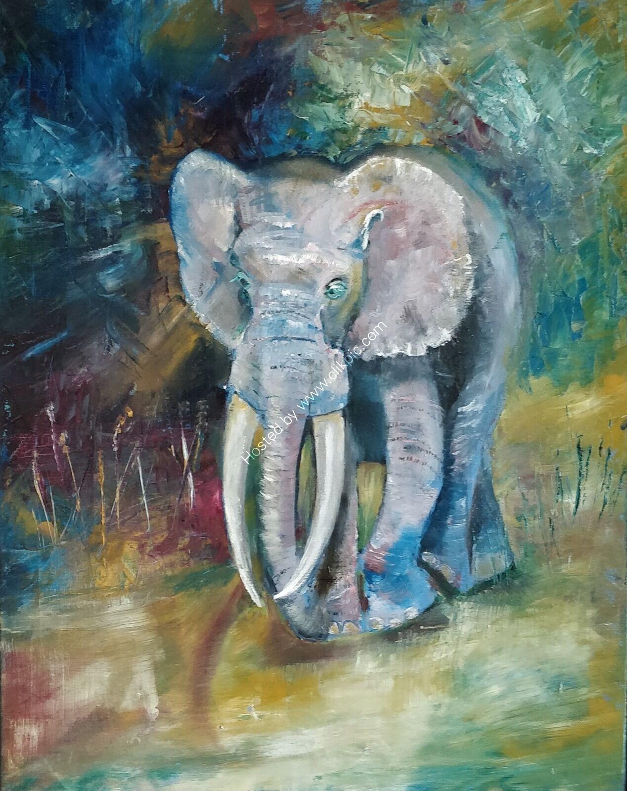 Elephant in oils