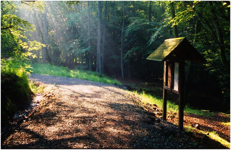 Path to Bracklinn Falls