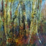 North Hill Wood - Autumn