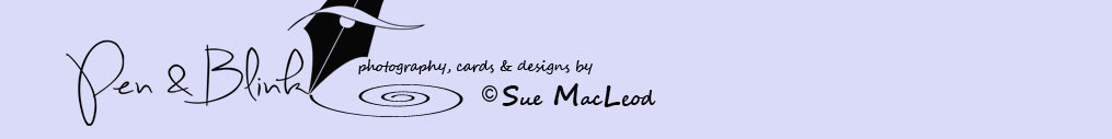 photography, cards and designs by Sue MacLeod