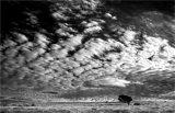Exmoor sky
