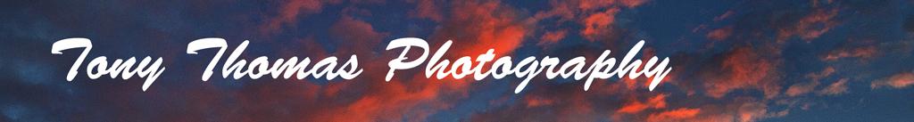 Tony Thomas Photography