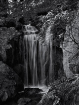 Falling water - Larry Williams