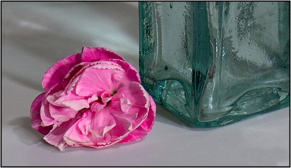 Textures - Mary Pipkin
