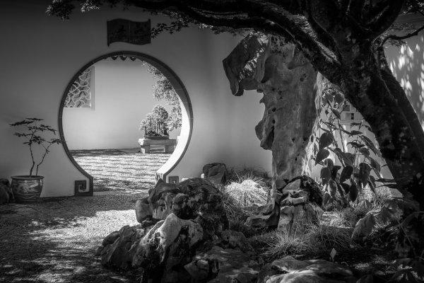 Through the Round window - Larry Williams
