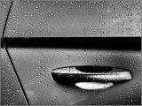 Wet - Ian Ledgard