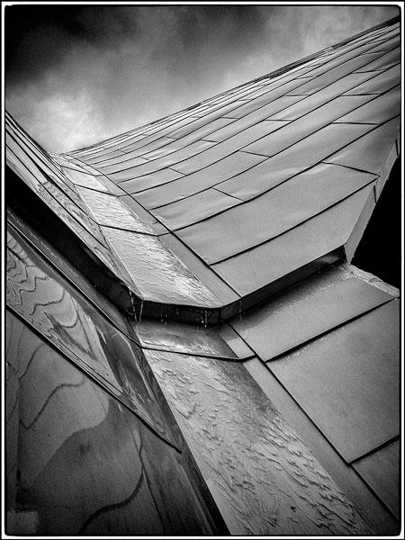 Roof gully - Ian Ledgard
