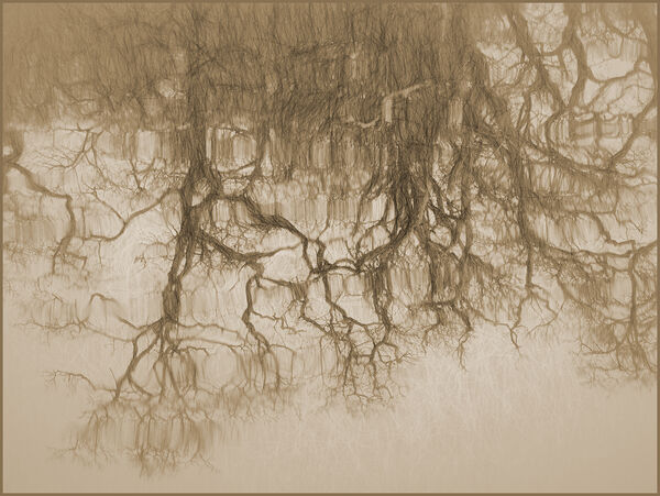 Sketched reflections